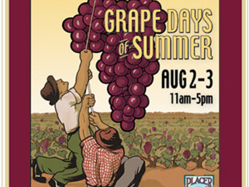 Grape Days of Summer